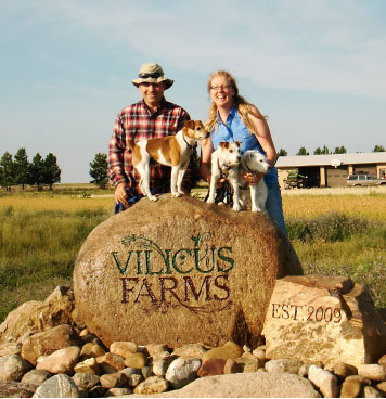 Welcome to Vilicus Farms